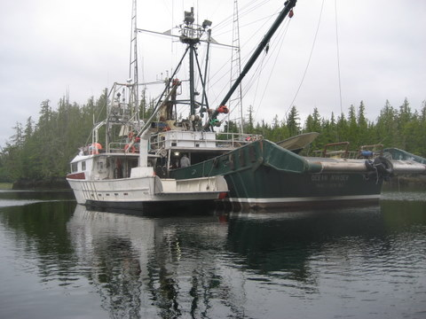 Commercial crabbers at Dixon Island